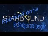 Краткий обзор Starbound или как пытаемся сделать обзор