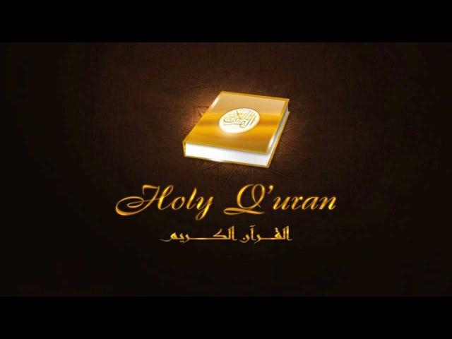 Сальман аль Утайби-коллекция прекрасного чтения!
