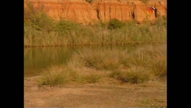 Грозовые камни / Thunderstone (1-й сезон, 24-я серия) (1999-2000) (фантастика, фэнтези, приключения, семейный)