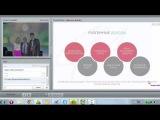 Презентация компании Swiss Halley (FireFlies)