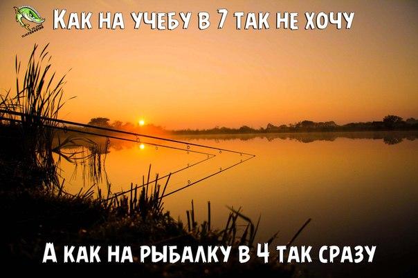 http://cs621727.vk.me/v621727124/2ad02/UV-Pv441JIA.jpg