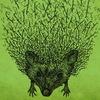 Hedgehog in the Fog / Ёж в Тумане