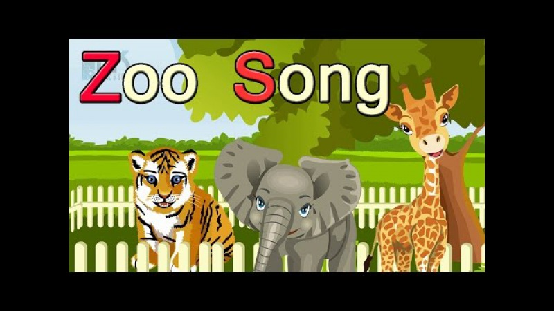 The Zoo Song