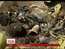 Понад двісті кілограмів сміття з дніпровського дна підняли сьогодні столичні аквалангісти