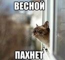 Ксюша Орлова фото #3