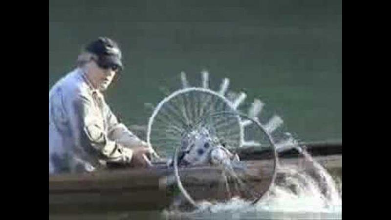 Water wheel boat