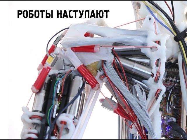 Роботизированные мышцы и скелет - Eccerobot. Роботы наступают!
