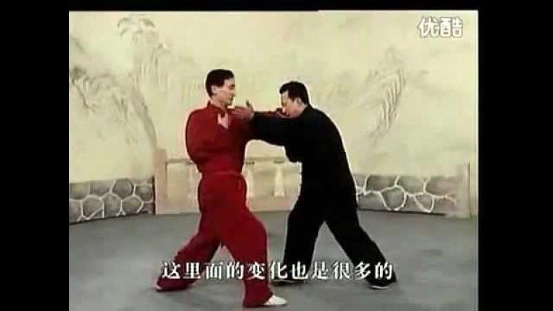 八极拳 李俊义 单打 BajiQuan LiJunYi Danda (DuiDa)