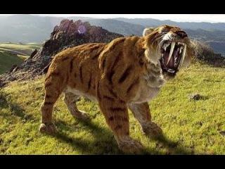 Доисторические хищники: Саблезубый Тигр серия 2.(динозавры HD) документальный фильм