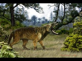 Доисторические хищники: Челюсти, как бритва гиенодон серия 6. (динозавры HD ) документальный фильм
