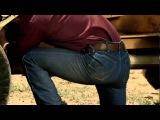 Wrangler Premium Performance Cowboy Cut Jeans