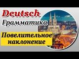 Повелительное наклонение в немецком языке. Imperativ. Урок 21/31. Елена Шипилова.