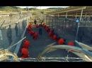 Тюремное рабство, ГУЛАГ в США, Военная Тайна, передачи и документальные фильмы