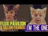 Flux Pavilion &amp Dillon Francis - I'm The One