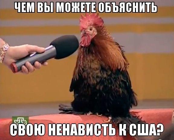 """Боевики обстреляли блокпосты """"Марьинка"""", """"Золотое"""" и """"Майорское"""", - Госпогранслужба - Цензор.НЕТ 6156"""