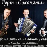 Гурт Соколята