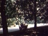 Лариса Мондрус - Откровенная песня (муз. Павла Аедоницкого - ст. Михаила Танича и Игоря Шаферана)