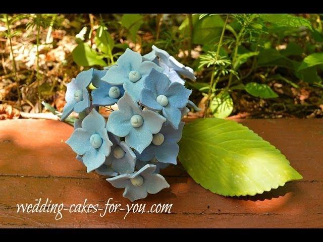 Gumpaste Flowers Tutorial Hydrangea