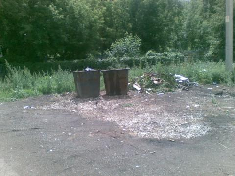 Житель Чистополя пожаловался на открытые мусорные контейнеры на улице Фрунзе – «Народный контроль»