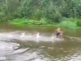 Когда что-то коснулось тебя под водой - http://vk.com/sasisa_ru