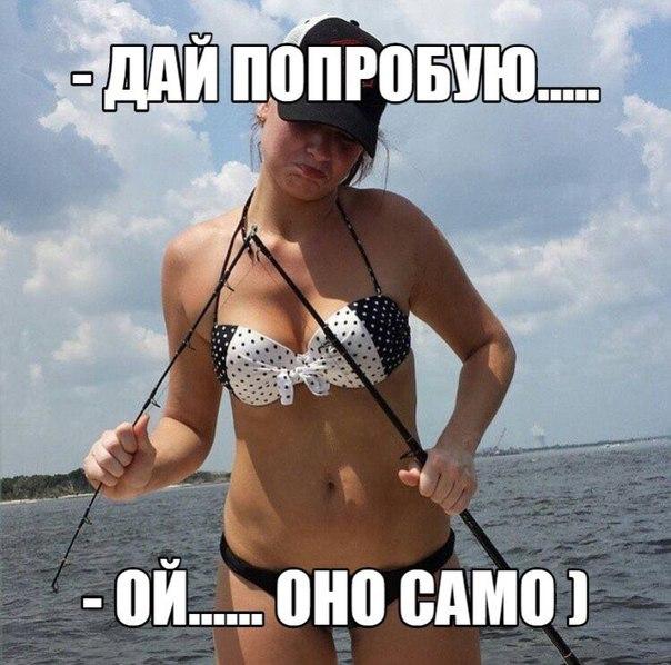 http://cs621816.vk.me/v621816754/39335/ZMwi_cuFyo4.jpg