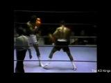 Matthew Saad Muhammad knocks out Lottie Mwale (1980-11-28)