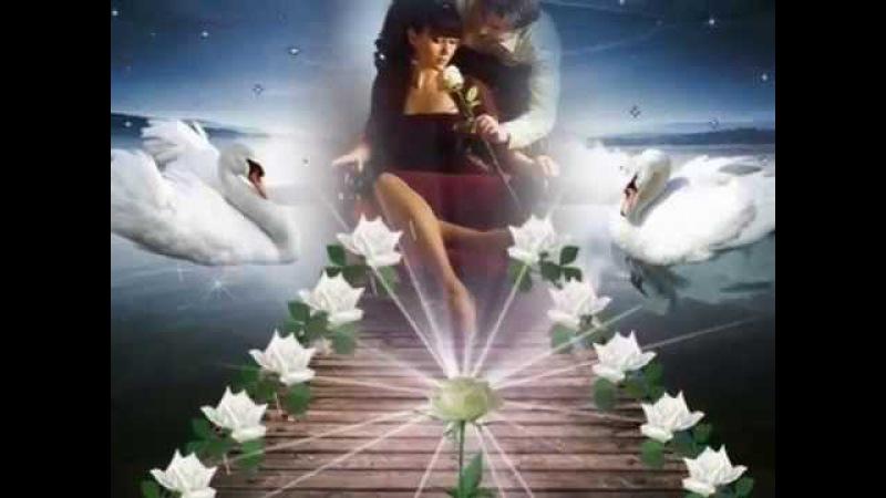 Аркадий Кобяков Моя любовь как лебедь белая