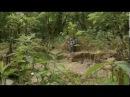 Извержение вулкана 1815 года - год без лета, Тамбора, Йеллоустоун