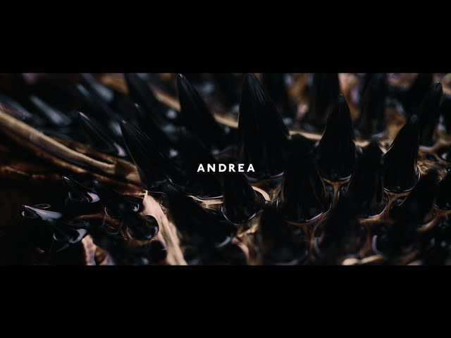 ANDREA (feat. Vanessa Elisha) - DOWN (music video)