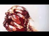 Hannibal (TV Series) Opening