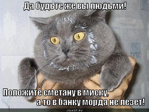 http://cs621819.vk.me/v621819368/99d3/1SE7N0BGF4Q.jpg