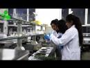 Ғылыми зерттеумен тауарды өндірумен саудамен қайырымдылықпен шұғылданушы биотехнология жағынан дамушы IPAR корпорациясы