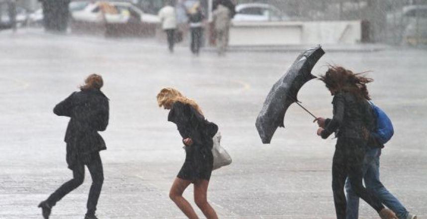 Спасатели: в Таганроге и Ростове ожидается сильный ветер до 22 м/с и дождь