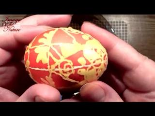 Красим пасхальное яйцо с помощью воска