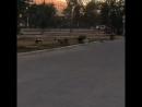 Собачьи бои в центре города Актобе.