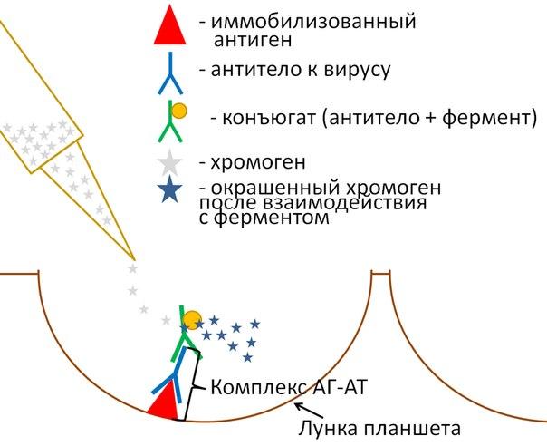 лабораторной центрифуги