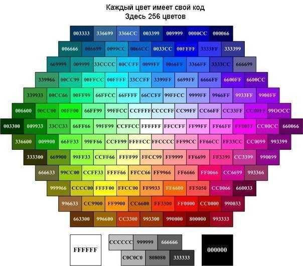 как сделать фотографию цветной: