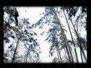 Вячеслав Добрынин - Ты разбила мне сердце