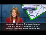 The Health Report A Gene for Gray Hair Identified