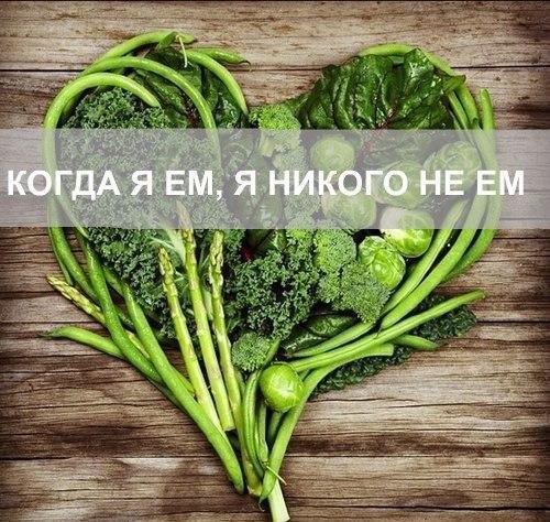 Афиша Хабаровск Мастер-класс по ВЕГЕТАРИАНСКОЙ КУХНЕ