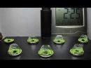 Медицинская Марихуана на гидропонике (ускоренная съемка)