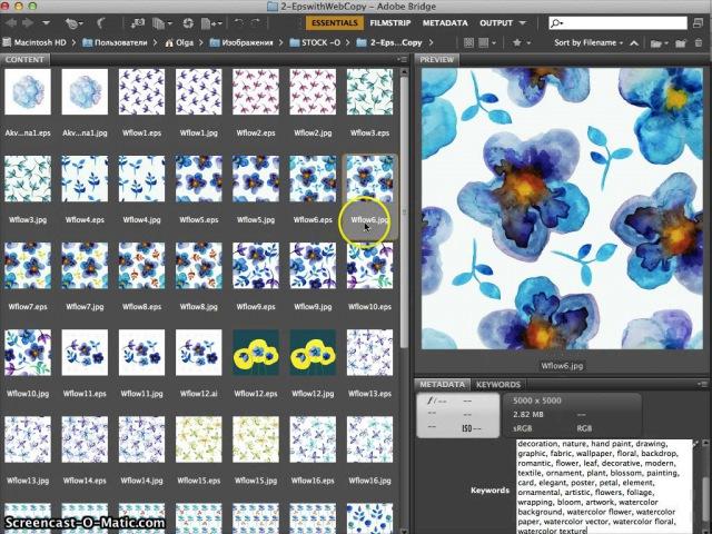 Прописываем ключевые слова в картинки с помощью Adobe Bridge