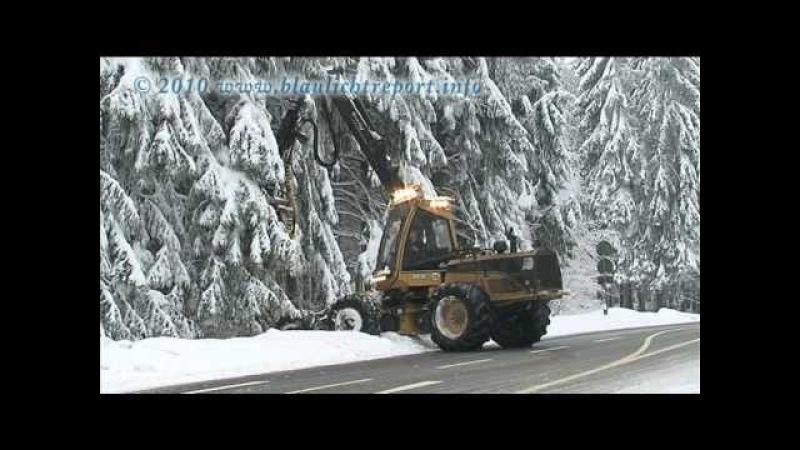 03.01.2011: Schneebruch - Harvester im Einsatz - Bäume werden gefällt