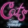• CATS Мужской Клуб • Ставрополь •