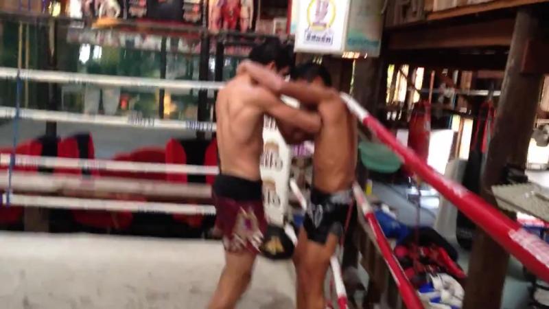 Rustam Safarov with Sangmanee Sor Tienpo muaythai clinch training at 13coins gym Bangkok Thailand
