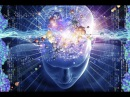 Загадка Мозга Обитель разума