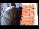 видео фотосессия зимннее ню на стадионе МГУ