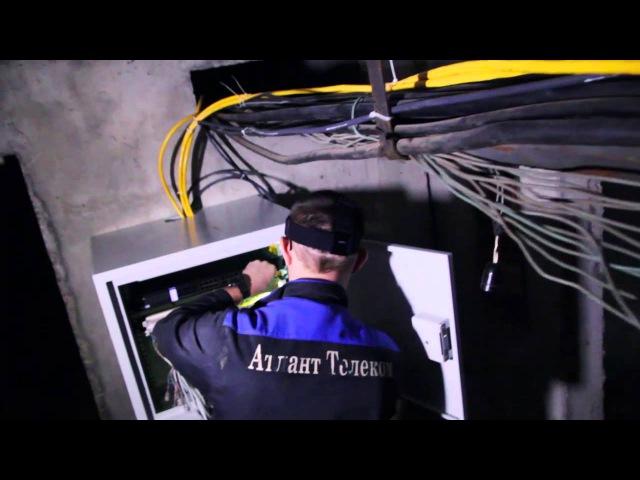 Как в наши дома попадает Ethernet отследил весь процесс