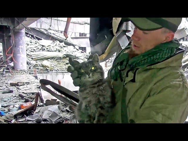 Моторола Как брали Донецкий аэропорт