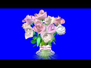 Букет Роз. Футажи на Хромакее. Букет Роз Видео. Красивый Букет Роз